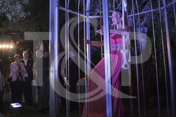 cage a oiseau cote d'azur, cage à oiseau, cote d'azur, cage cote d'azur, cage artiste